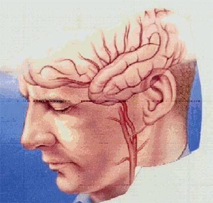 يطلق عليه الدماغ الثاني للانسان , هل تعلم من هو ؟ do.php?img=44954