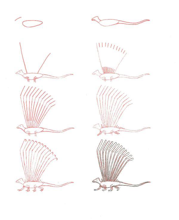 الرسم بخطوات بسيطة وسهلة 2 13308555901.jpg