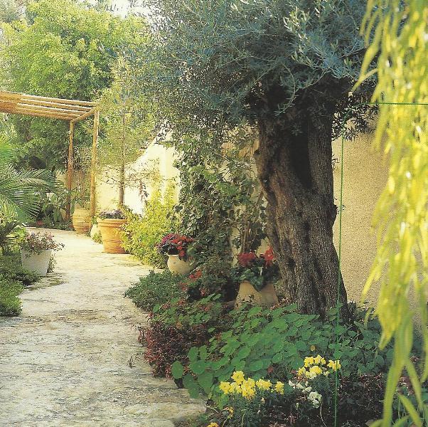تصاميم حدائق منزلية صغيرة 13326834201.jpg