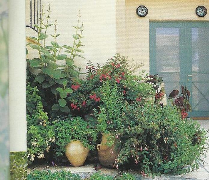 تصاميم حدائق منزلية صغيرة 13326845841.jpg