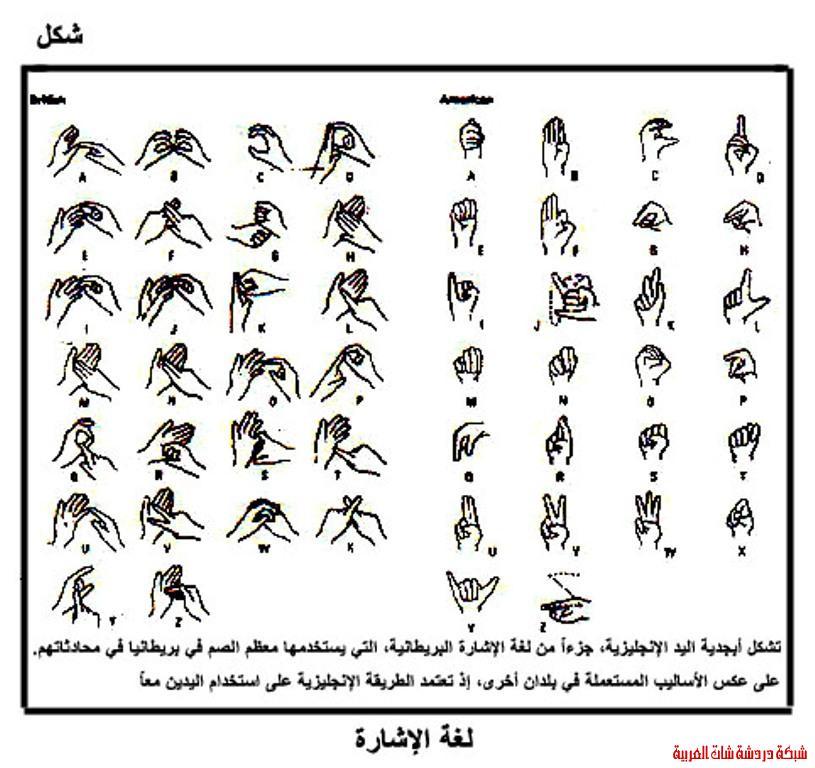 لغة الاشارة 13344116151.jpg