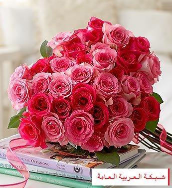 سر عاشق مصر 13520210951.jpg