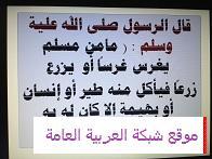حملة التشجير بالمدرسة المتوسطة الثانية عشر للبنات في عرعر 13569765481.jpg