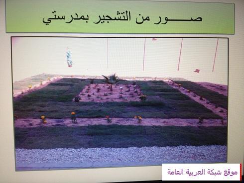 حملة التشجير بالمدرسة المتوسطة الثانية عشر للبنات في عرعر 13569766981.jpg