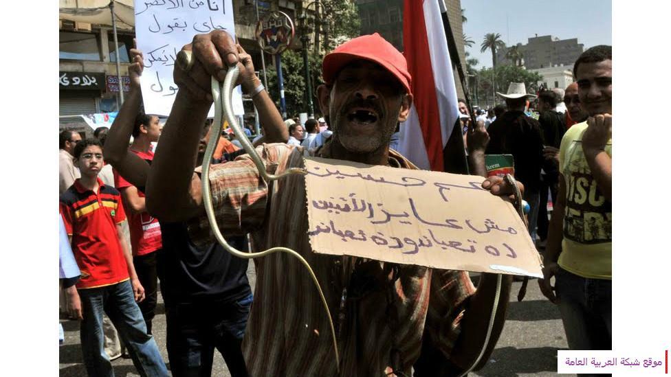 صور غير تقليدية للاحتجاج في مصر 2012 13573989844.jpg