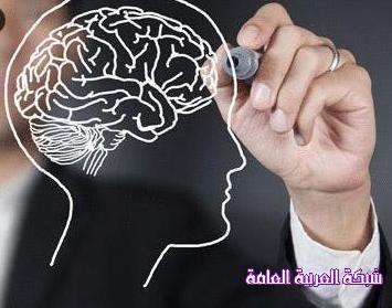 معلومات غريبة عن العقل البشري 1383474241621.jpg