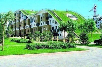 سقف رائع في المانيا مصمم بطريقة غريبة .. 1393101621431.jpg