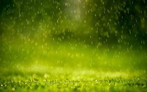 ننصح بالتعرض لماء المطر 1396635110131.jpg
