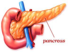 يمكن لكثرة الكربوهيدرات ان تسرع في ظهور السكري 1396781066091.jpg