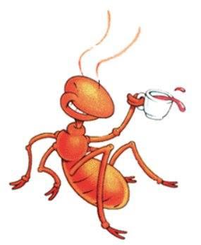 زيت النمل...وتساؤل...!!!؟؟؟ 1396987071771.jpg
