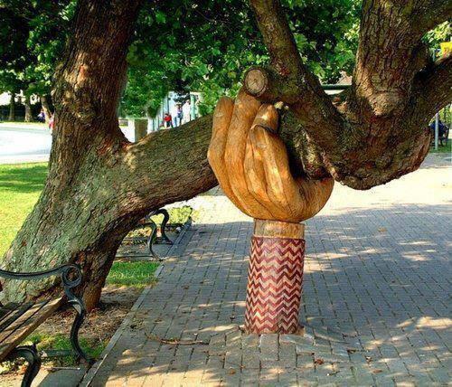 انقاذ شجرة من السقوط فى آخر لحظة 1397931480141.jpg
