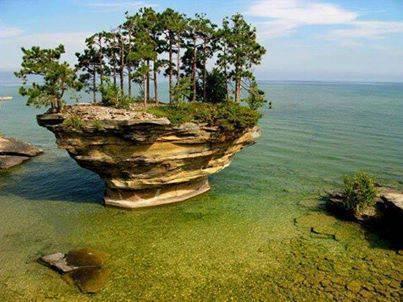 صخرة اللفت: وكأنها من كوكب آخر 1398728127861.jpg