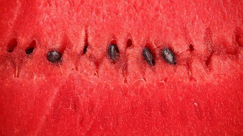 هل بذور البطيخ الاحمر طعام قراني ..اسرارها وفوائدها 1399332413461.jpg