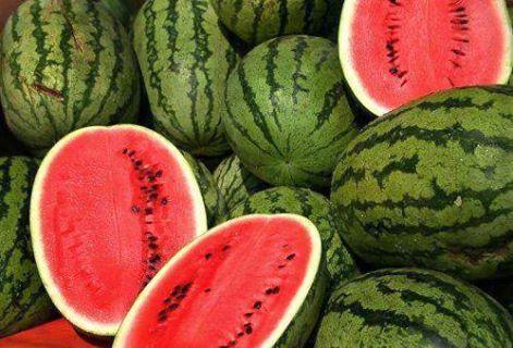 دكتور يقال أن بذور البطيخ فيها نسبة الكلسترول عاليه فهل هذا صحيح ؟ 1399751131311.jpg
