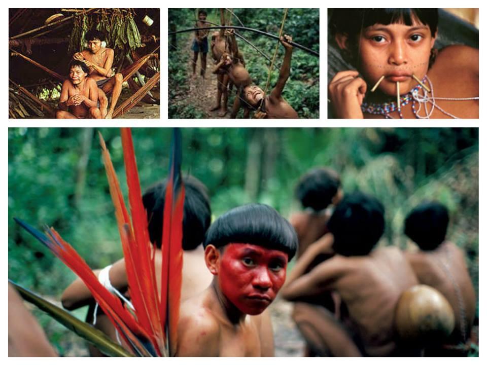 قبائل يانومامو***Yanomamo 1432541981531.jpg