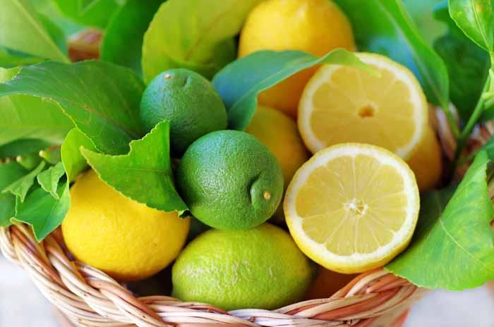 حيلة بسيطة لتحافظي على الليمون الحامض طازجاً لمدة شهر 1434209510711.jpg