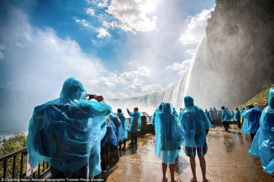 مجموعة من الصور المرشحة لجائزة ناشيونال جيوغرافيك لعام 2015 1435414921531.jpg