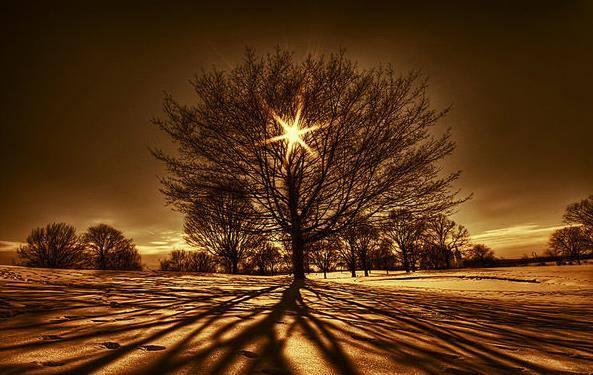 مجموعة من الصور الطبيعية التي تجلت فيها قدرة الخالق 1435417382451.jpg