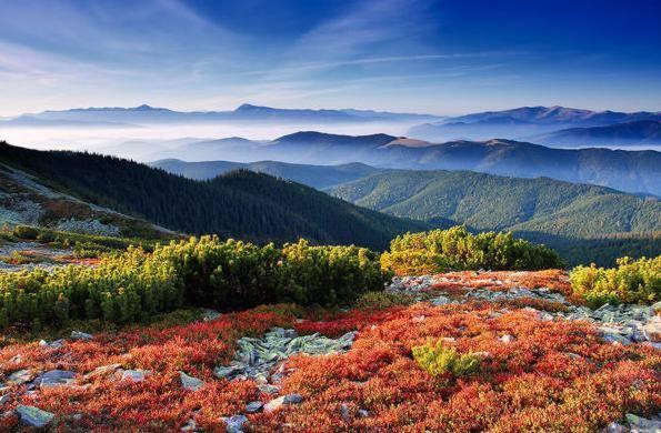 مجموعة من الصور الطبيعية التي تجلت فيها قدرة الخالق 1435417555621.jpg