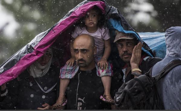 صور صادمة لمعاناة اللاجئين السوريين على حدود مقدونيا 1440242518183.jpg
