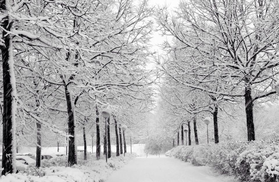 هل الجو البارد يسبب المرض ؟ 1441677622071.jpg