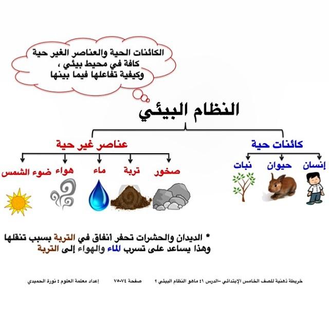 تلخيص علوم خامس الفترة الثانية درس النظام البيئي 2014 منهاج الكويت 1462048225731.jpg
